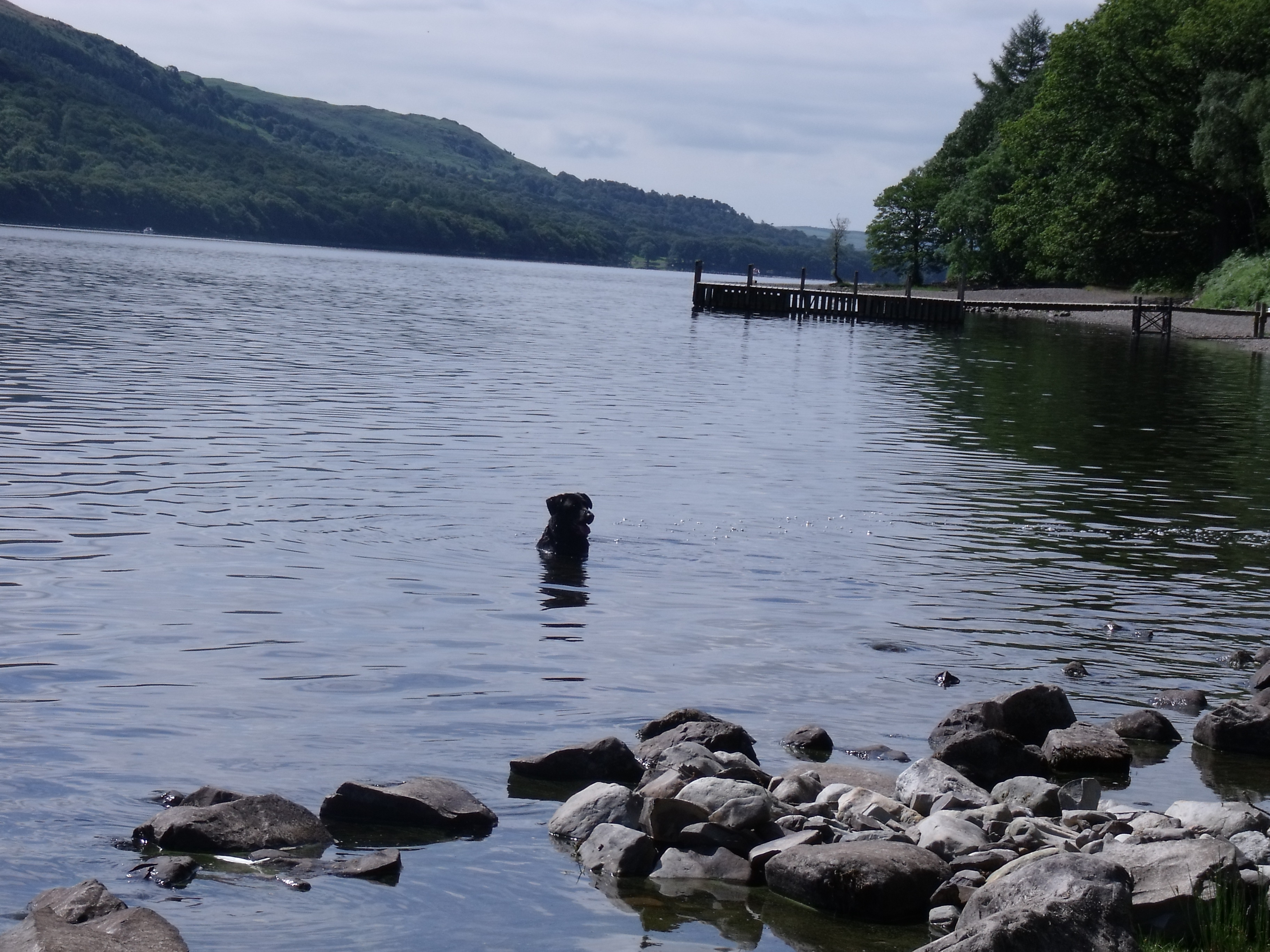 """Coniston Water is the straightest  of the lakes, which is what attracted Donald Campbell to attempt the world water speed record in his boat, the bluebird. Coniston was also the inspiration for """"Swallows and Amazons""""."""