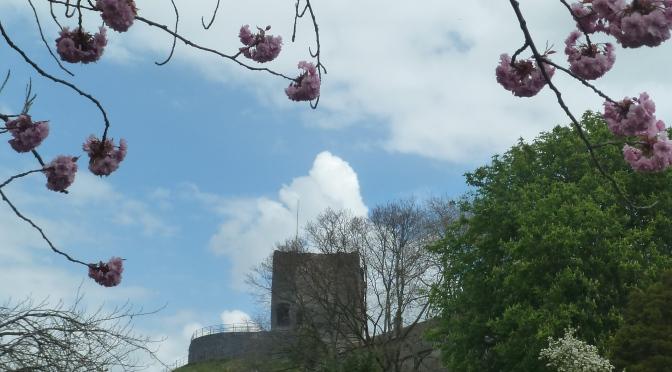 May Blossom :)