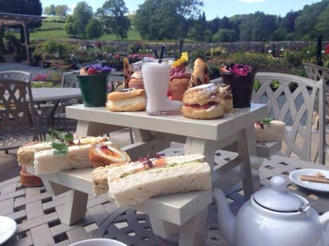 A Picnic Bench Afternoon Tea. Yummy !