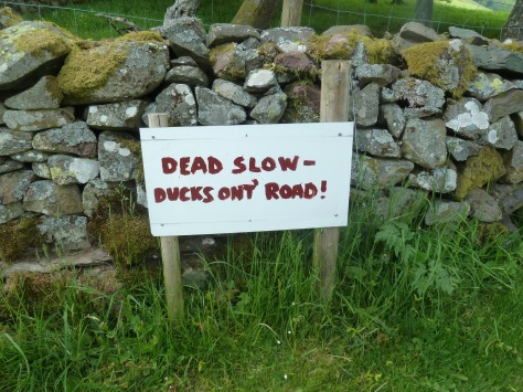 Sign on the country lane by the site.