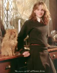 Crookshanks is Hermoine's cat in the Harry Potter books and films.  He is half -cat/half -Kneazle. Therefore has the magical ability of recognising untrustworthy persons. Always handy    at Hogwarts !