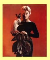 Pyewacket ( I love that name) is Kim Novaks Witche's siamese who helps her cast a spell on mortal James Stewart in romantic comedy Bell,Book and Candle. Pyewacket was the name of an actual witch's familiar in 1647.