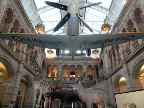 Dramatic welcome in the Kelvingrove.