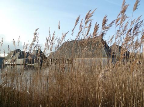 Brockholes floating visitor centre.