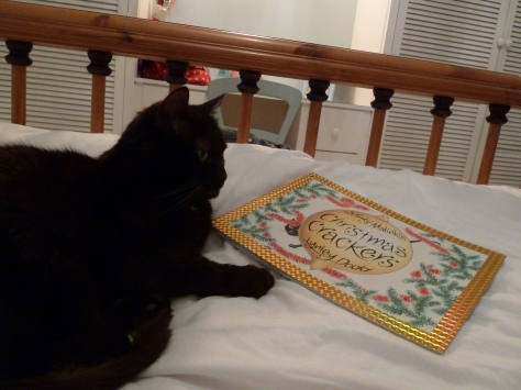 Slinky Malinki enjoying reading about her namesake. :)