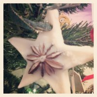 Star Anise Christmas tree Decorations.