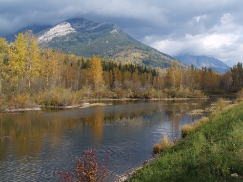 The Elk river welcomed us back to Fernie and the Fall had taken up residence.