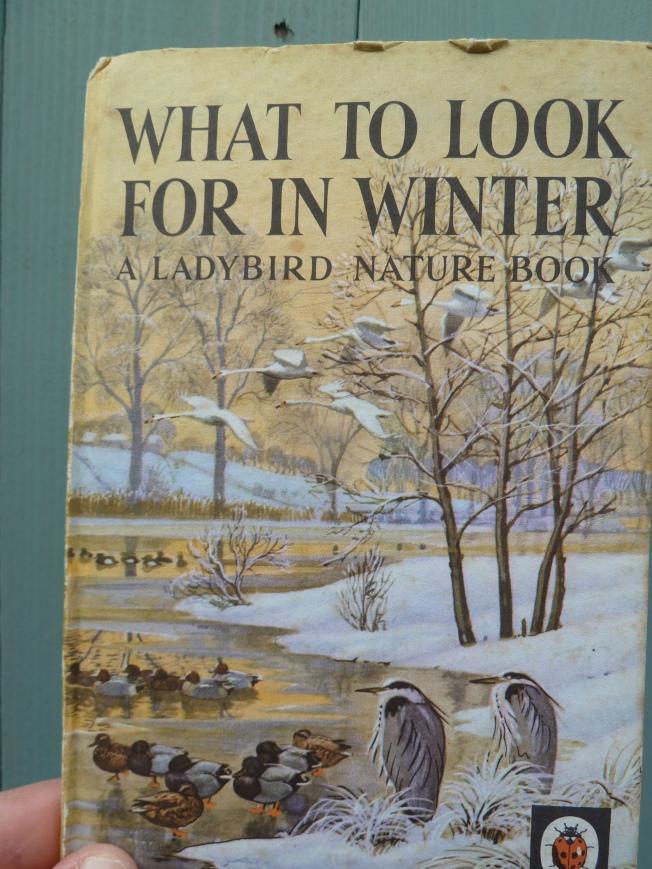 Ladybird Nature book. :)