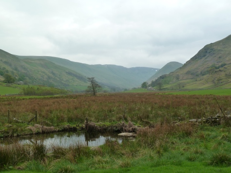 Remote and beautiful martindale.
