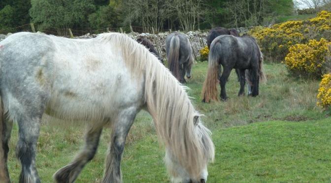 Visiting family in Cumbria.