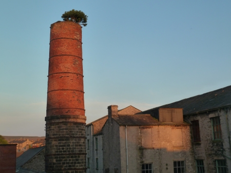 This was taken on a sunny evening. The view from our bedroom. Love my chimney !