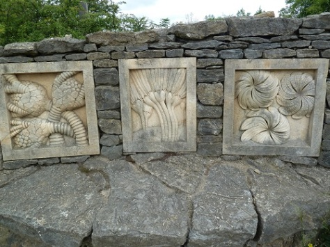 Fossil wall.