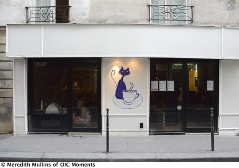 Le cafe des chats ( Photo www.oh-I-see.com/blog/ )