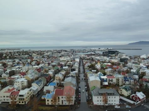Reykjavik Rooftops.