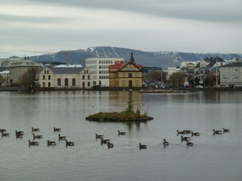 Iceland 048