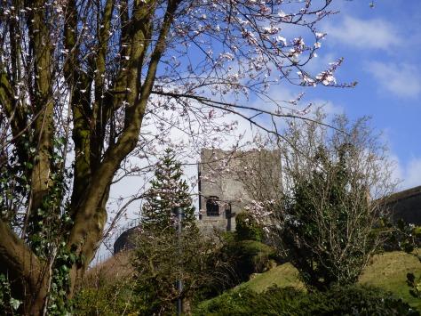 The castle through the blossom.
