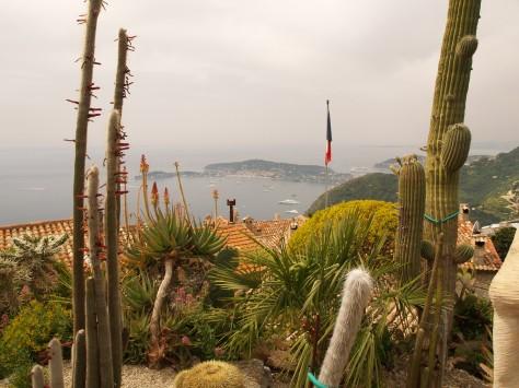 Cactus garden in Eze.