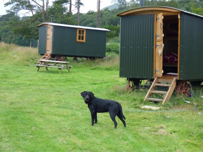 coniston shepherd huts 020