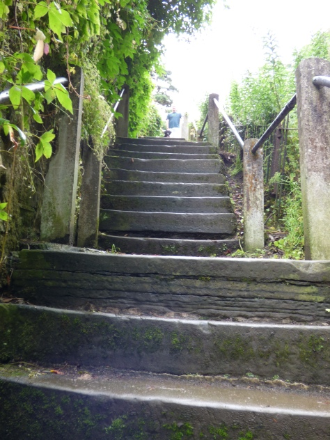 The steep Radical steps ( there are 86 of them! )