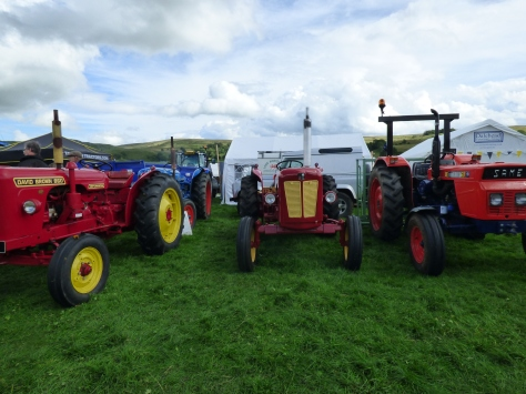 Vintage Tractors.