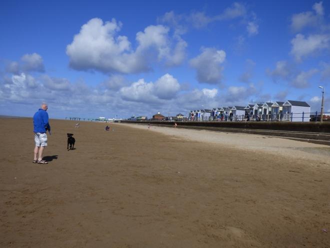 St Annes has a great Dog friendly beach.