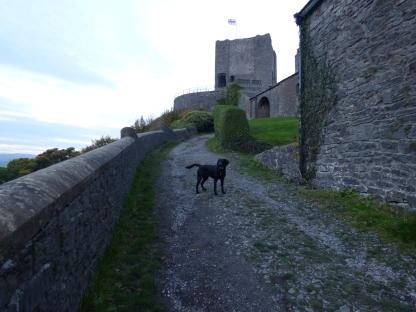 castle scavenger 005