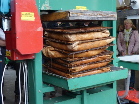 The pulp is pressed into cakes which isn't wasted. It is used as fertilizer and also goes to a nearby farm to feed the pigs.