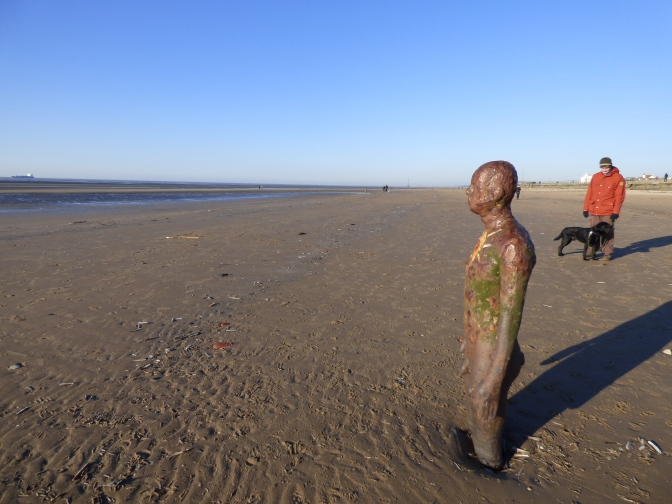 Sea Air  ~  Squirrels and Naked Men on the Sefton Coast.