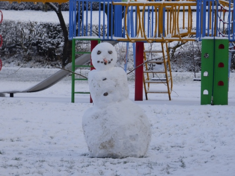 snow day 029