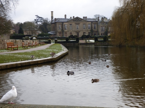coombe abbey 046