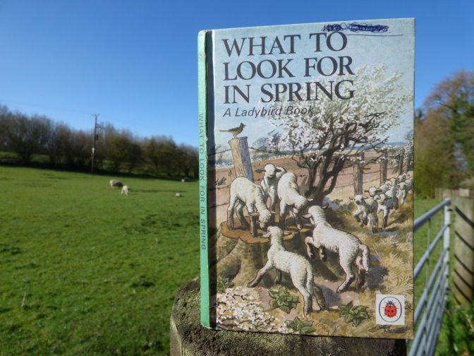 What to look for in Spring ~ A Ladybird Book.