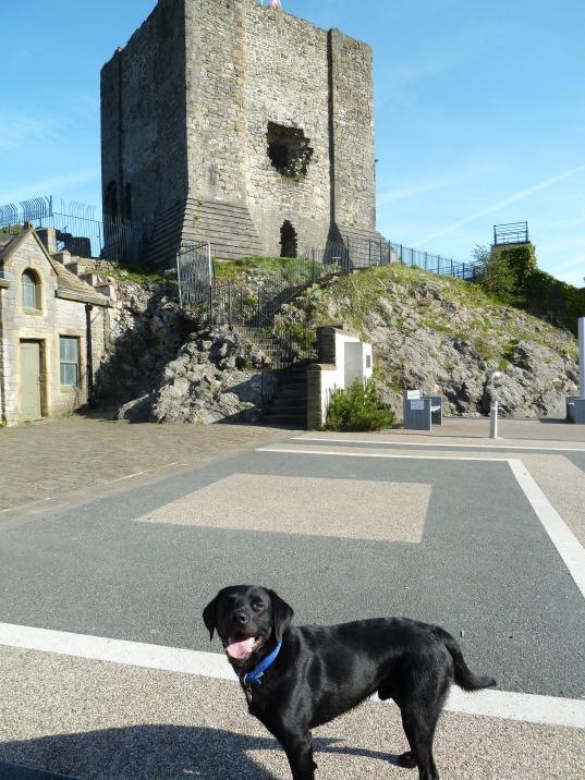 castle walk hugo 013