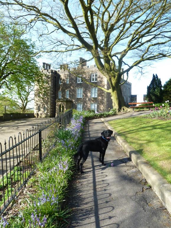 castle walk hugo 021