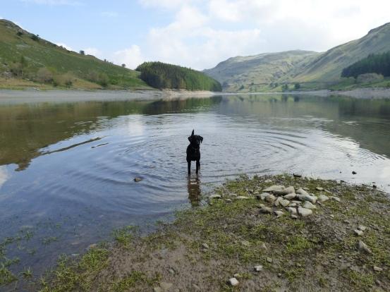 lakes may 2016 053