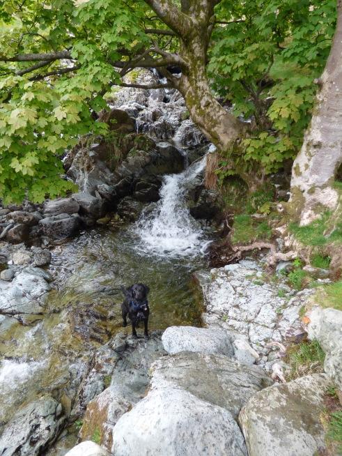 lakes may 2016 117