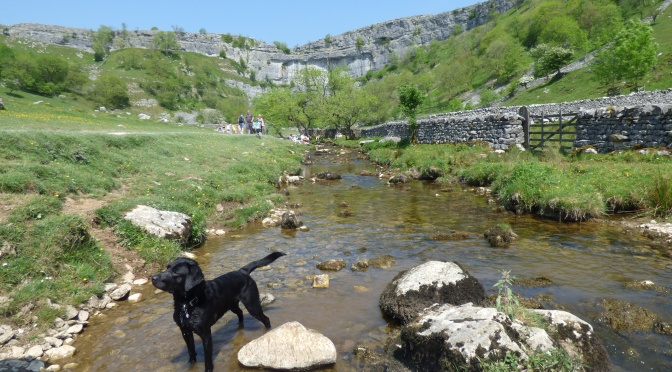 Janet's Foss and Malham Cove.