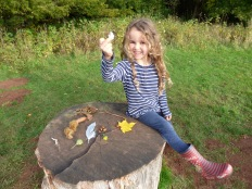 Autumn finds at Lowther Park in October.
