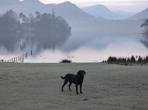 A Pet-friendly Break in Keswick.