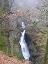 aira force 004