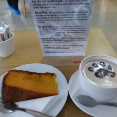 cat cafe manchester 011