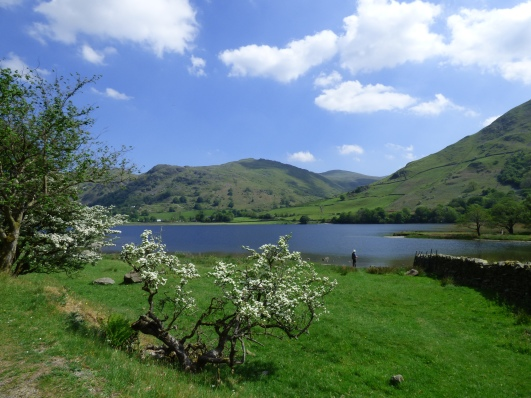 brotherswater 012