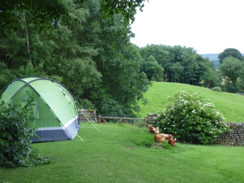 camping appletreewick 100