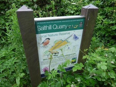 salthill quarry 014