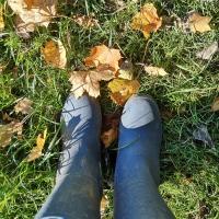 Wild October. 🍁🍄