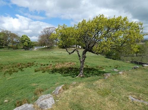 Dean Clough Reservoir Walk.