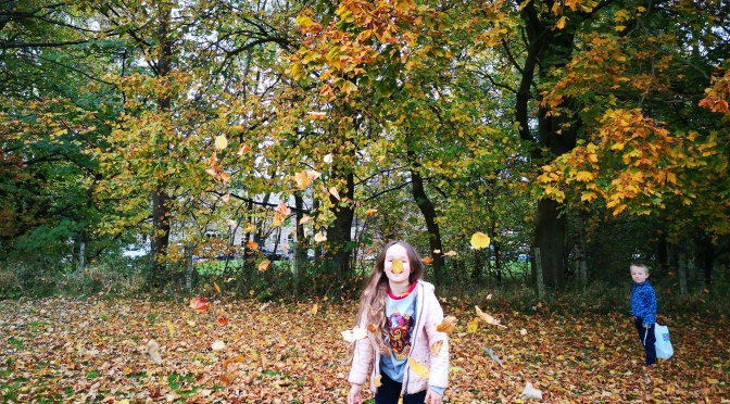 Autumn walk to Dunsop Bridge. 🍄🥾🍁