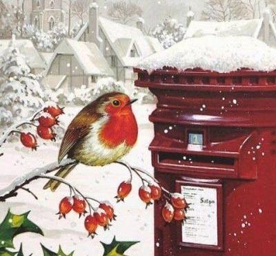 A Bird And A Poem ~ Robin.